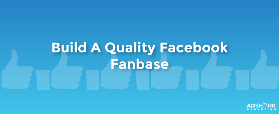 building a Facebook Fanbase