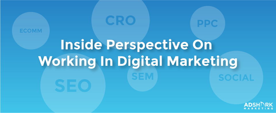 "An image box with the text, ""e-comm', 'cro', 'ppc', 'seo', 'sem', and 'social' with the title 'inside perspective on working in digital marketing.'"